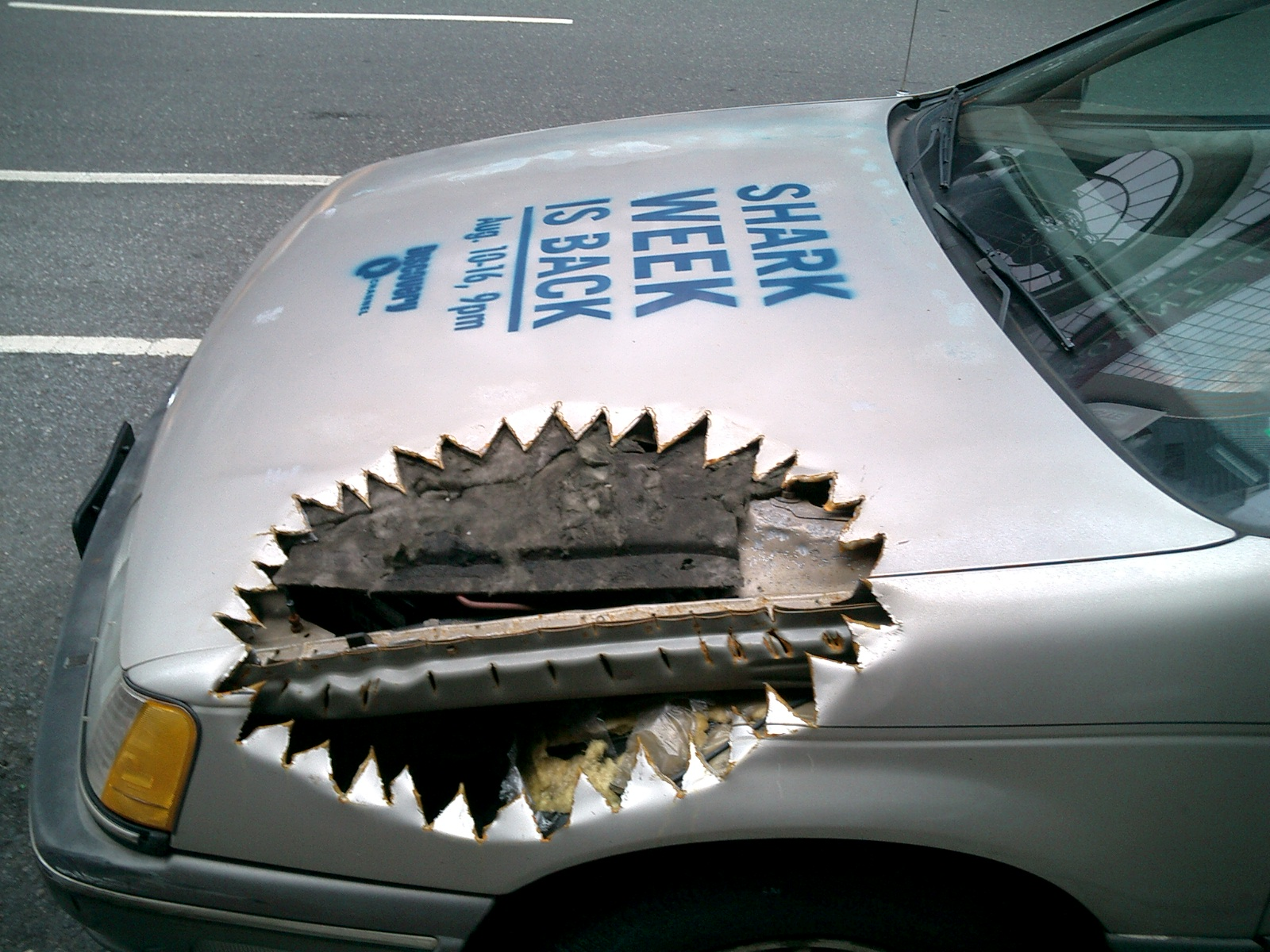 Shark-Week-Guerrilla-Marketing